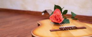 Guitar with a red rose lie on a floor against a wall.