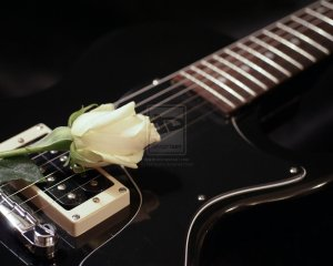 White_rose_on_black_guitar_by_kokopoko